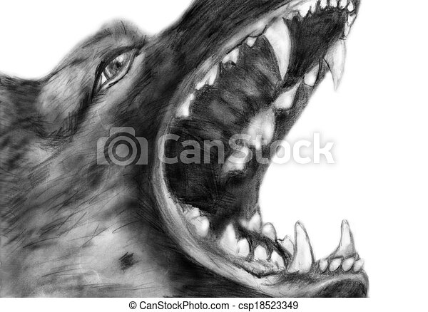 German Shepherd Pencil Drawing Isolated On A White Backgroubnd - German-shepherd-drawings