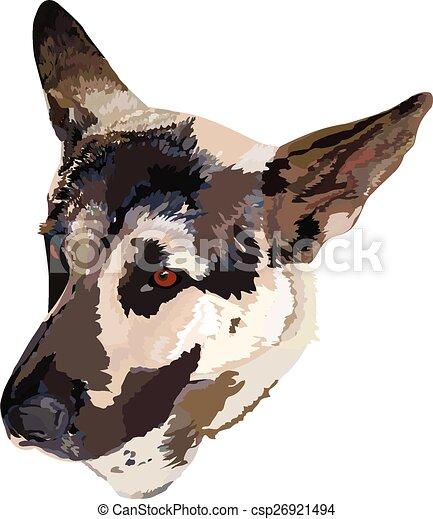 German Shepherd - csp26921494