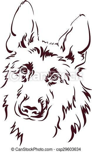 German Shepherd - csp29603634