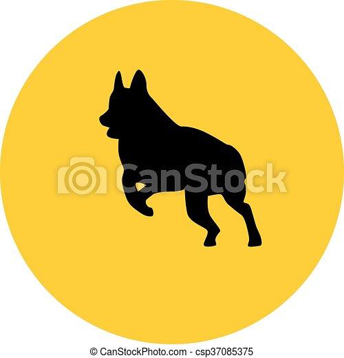 german shepherd - csp37085375