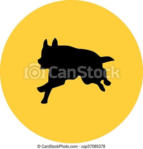 german shepherd - csp37085378
