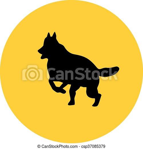 german shepherd - csp37085379
