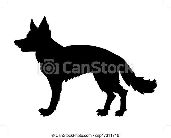 german shepherd - csp47311718