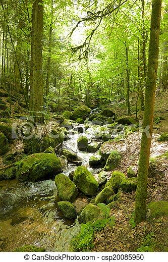 Gertelbach Waterfalls - csp20085950