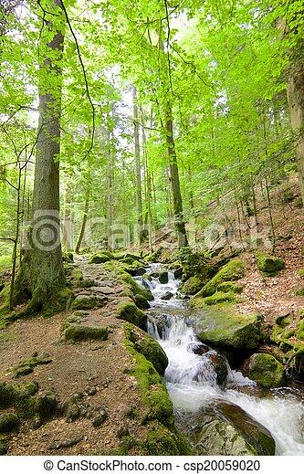 Gertelbach Waterfalls - csp20059020