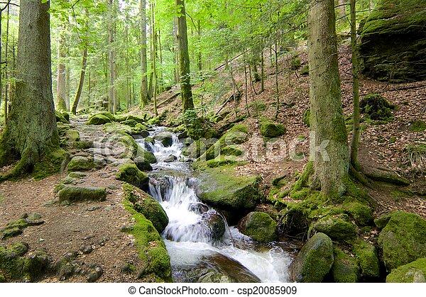 Gertelbach Waterfalls - csp20085909