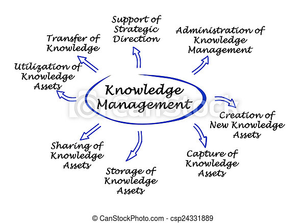 gestion, connaissance - csp24331889