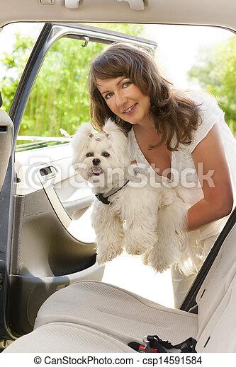 Getting dog into a car - csp14591584
