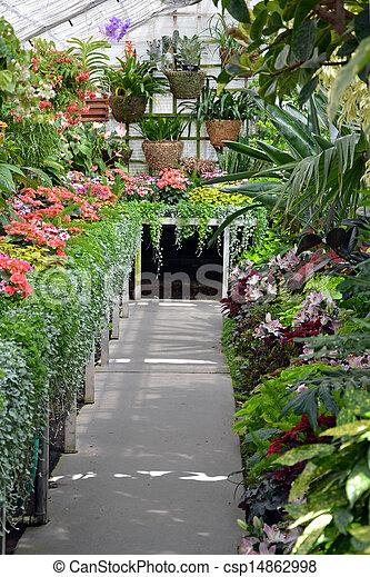 Tropische Gewachshaus Bunte Kleingarten
