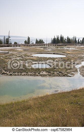 Geyser in Yellowstone National Park - csp67582984