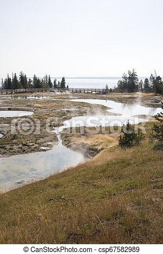 Geyser in Yellowstone National Park - csp67582989