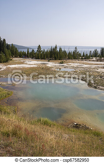 Geyser in Yellowstone National Park - csp67582950