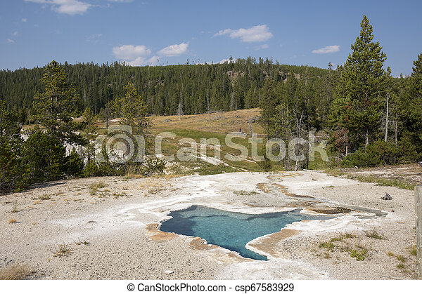 Geyser in Yellowstone National Park - csp67583929
