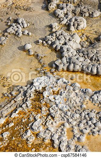 Geyser in Yellowstone National Park - csp67584146