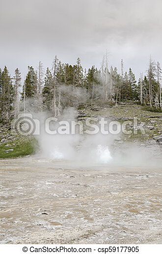 Geyser in Yellowstone National Park - csp59177905