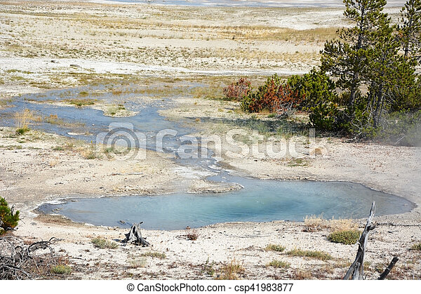 Geyser in Yellowstone - csp41983877