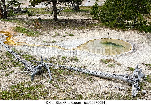Geyser in Yellowstone - csp20570084