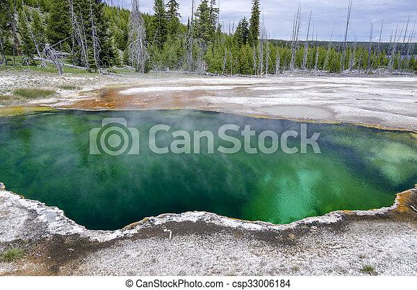 Geyser in Yellowstone - csp33006184