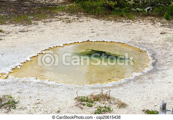 Geyser in Yellowstone - csp20615438