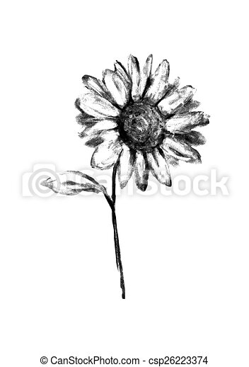 Gezeichnet Blume Abbildung Bleistift