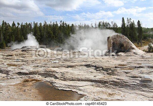 Giant Geyser in Yellowstone - csp49145423