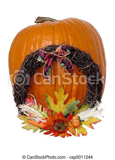 Giant Pumpkin - csp0011244