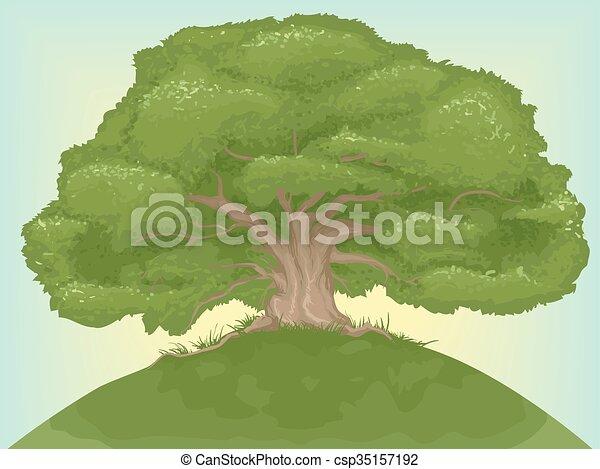 Giant Tree - csp35157192