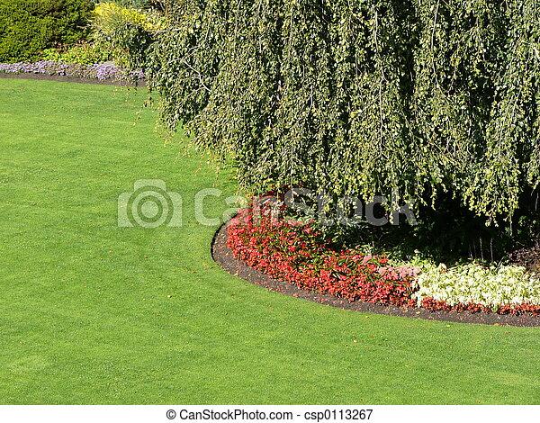 giardino - csp0113267
