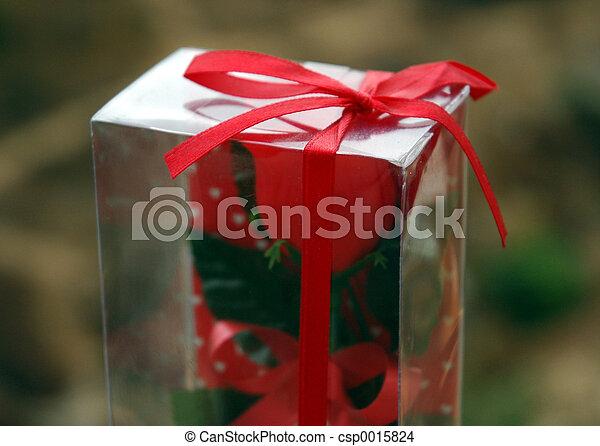 Gift - csp0015824