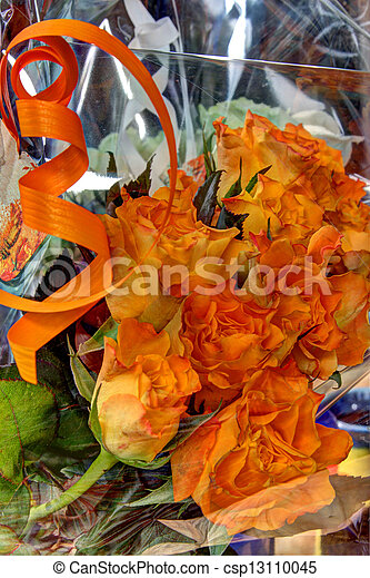 Gift wrapped roses - csp13110045