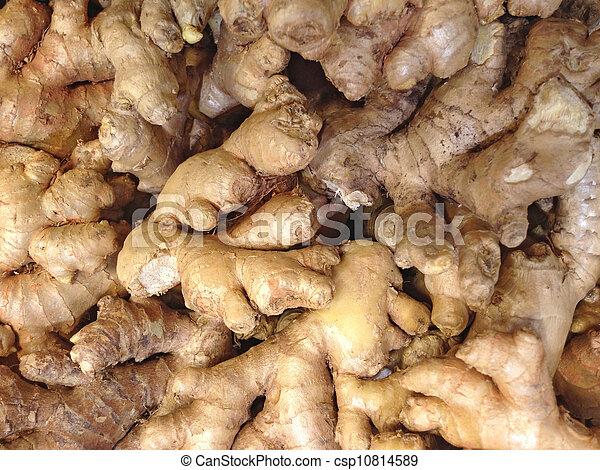 Ginger - csp10814589