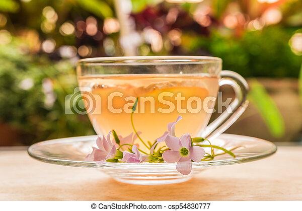 Ginger teacup - csp54830777