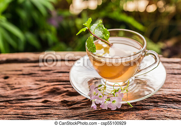 Ginger teacup - csp55100929
