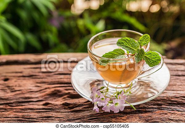 Ginger teacup - csp55105405