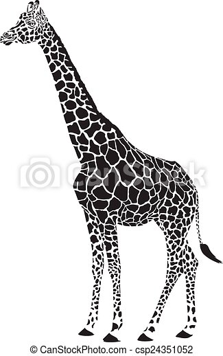 giraffe black and white vector - csp24351052