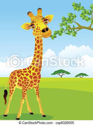 Giraffe eat leaf - csp6326005