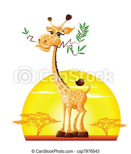 Giraffe - csp7976543