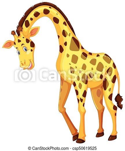 Giraffe on white background - csp50619525