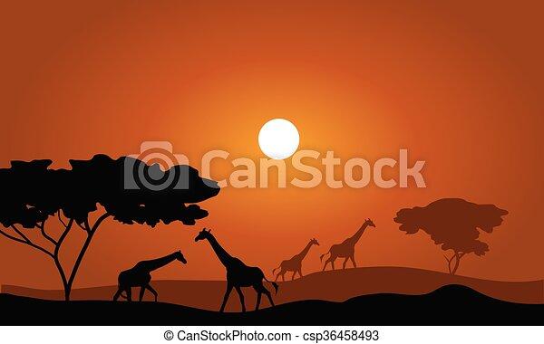 Giraffe silhouette savanna landscape - csp36458493