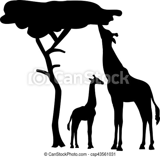 Giraffe Silhouette with tree - csp43561031