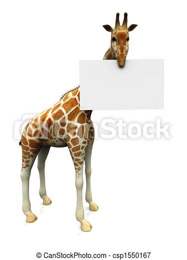 Giraffe with sign - csp1550167
