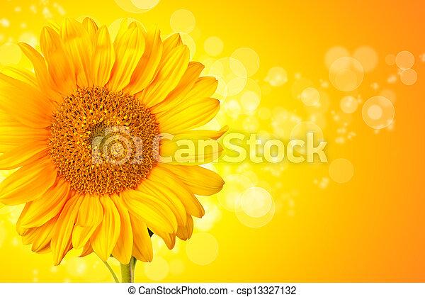 Flor de girasol con detalles abstractos y brillantes - csp13327132