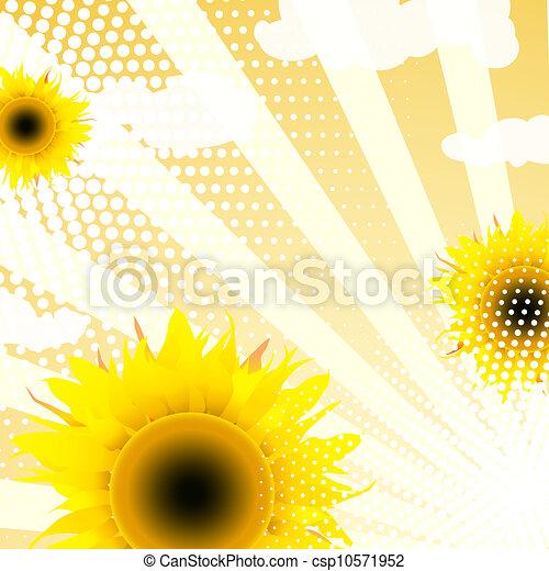 Trasfondo girasoles - csp10571952