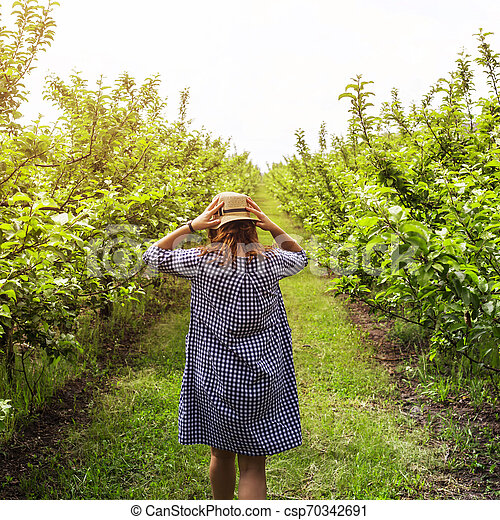 Girl in a blue dress in a green apple orchard - csp70342691