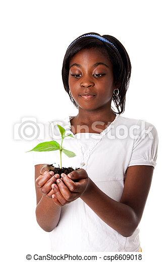 girl, plante, main - csp6609018