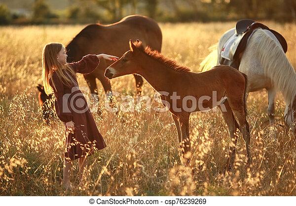 girl, promenades, cheval, 12, pieds nue, petit, vieux, année, champ - csp76239269