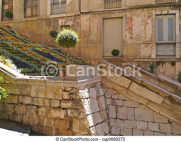 girona, fleurs, 01, vieux, étapes - csp0666373