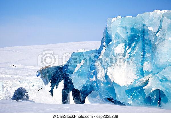Detalle glaciar - csp2025289