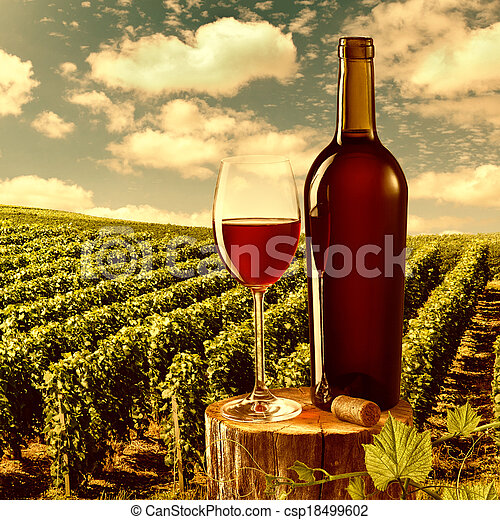 Glass and bottle of red wine against vineyard landscape - csp18499602