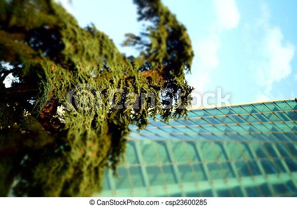 glass building - csp23600285